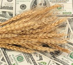 Ассоциация с Евросоюзом обернулась падением аграрного экспорта на 31%