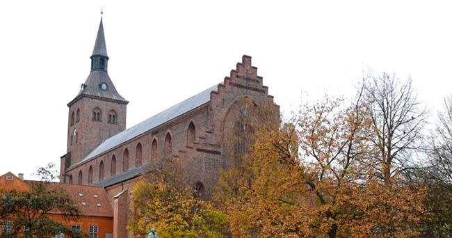 Оденсе (Odense)
