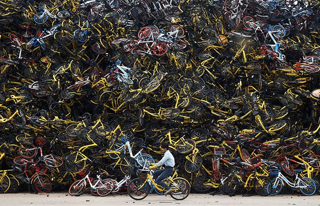 Велопрокат в Украине: не повторять китайский опыт