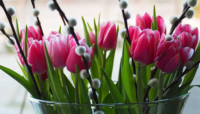 Імпортна краса: поставки квітів в Україну до початку 2019 продовжували збільшуватися