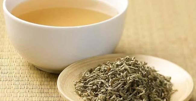 Белый чай – польза, доказанная временем